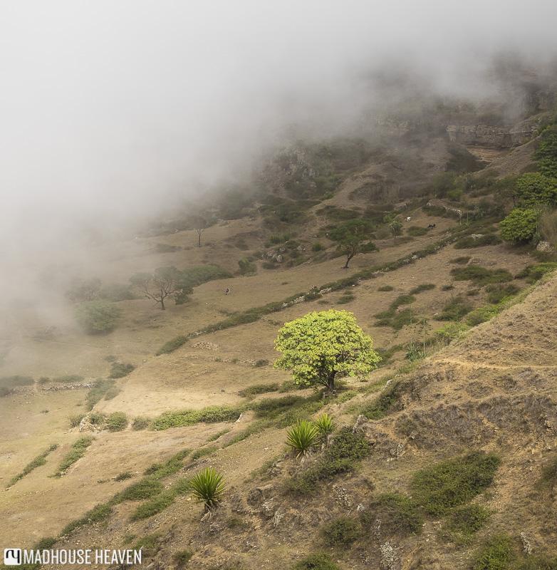 hiking on brava volcano caldera cape verde farm