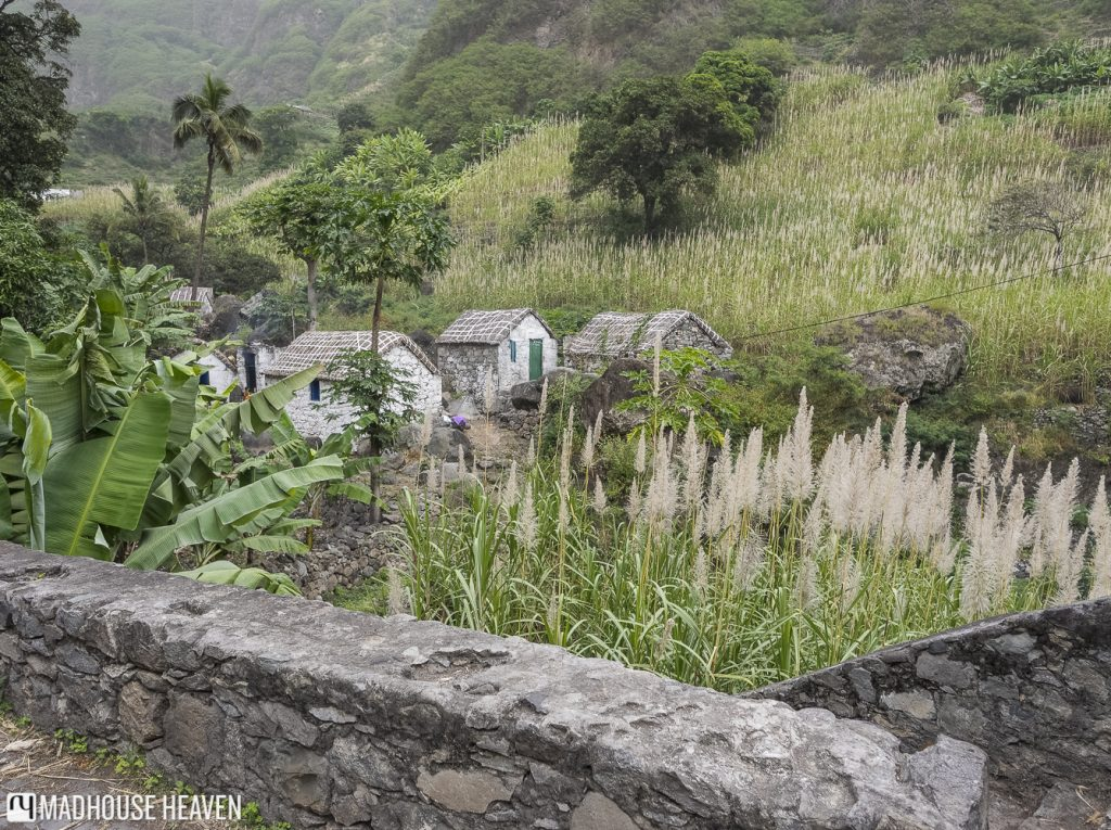 little white stone houses with tatched roofs in The Three Valleys, Fajã de Coculi, Santo Antao, Cape Verde