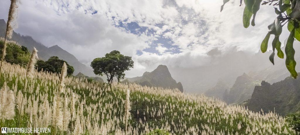 Hiking Paúl Valley cape verde santo antao
