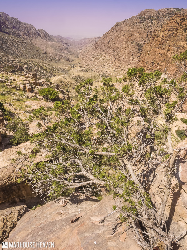 trekking through the dry river bed in Dana nature reserve, late spring in Ma'an, Jordan
