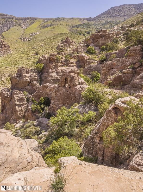 Rocky limestone outcrops in Dana Valley, nature reserve, Ma'an, jordan