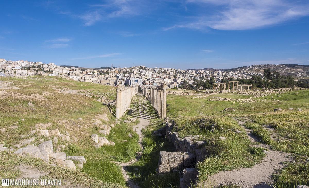 cardo maximus, gerasa, corinthian columns, roman ruins, visiting jerash jordan