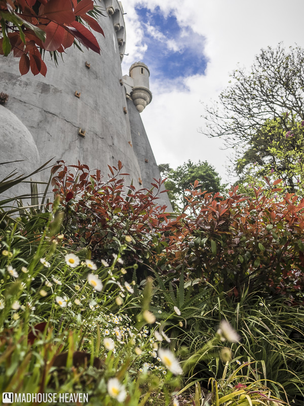 wild flowers in foreground, grey castle fortress rising in three point perspective