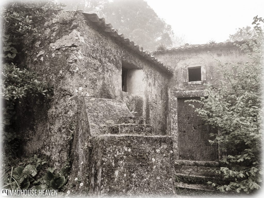 Stairs leading to medieval stone houses, forest, Convent of the Capuchos