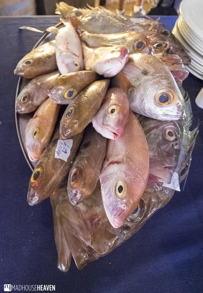 Platter of fresh fish on offer in a bayside restaurant in Marsaxlokk