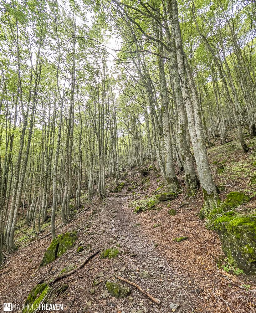 Hiking in Prokletije