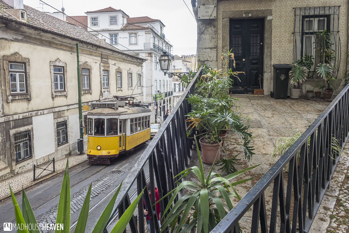 Yellow electric tram 28 climbing up a slope beside a narrow front garden - dynamic angles, European buildings, Lisbon's Architectural History