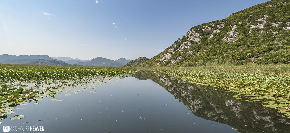 Boat Trip on Skadarsko Lake, montenegro