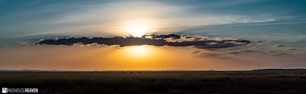 Panoramic shot of a sunset on the vast savannah in Kenya, Africa