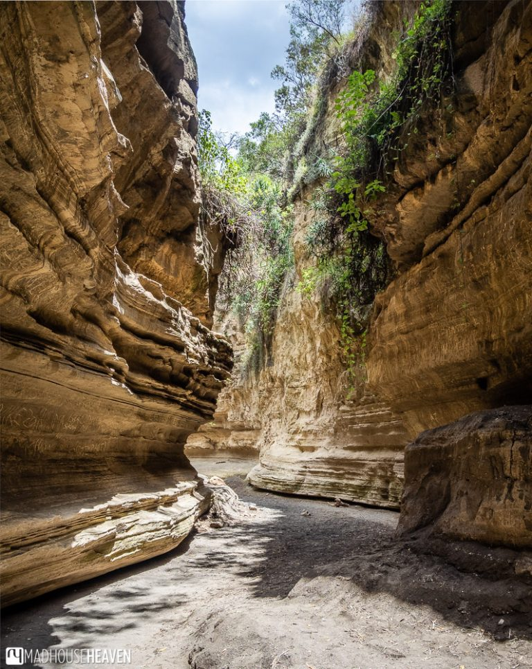 The labyrinthine canyons of the Ol Njorowa Gorge in the Hell's Gate National Park