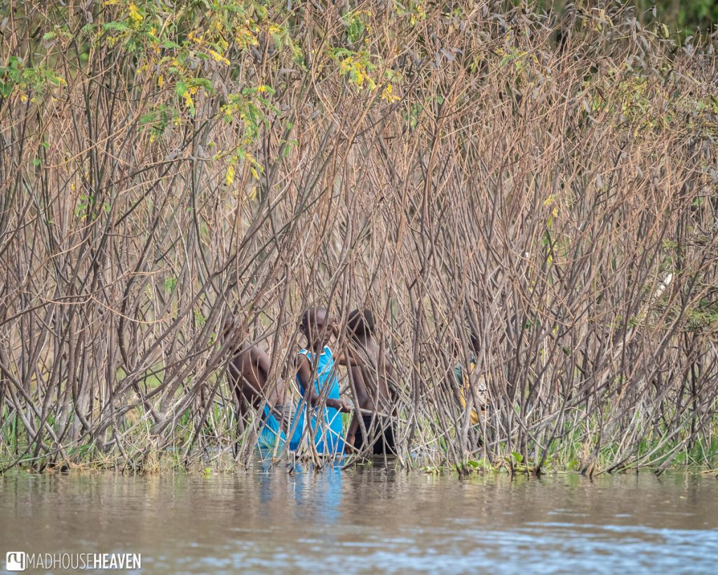 Group of children playing in the reeds near the shore of Lake Naivasha
