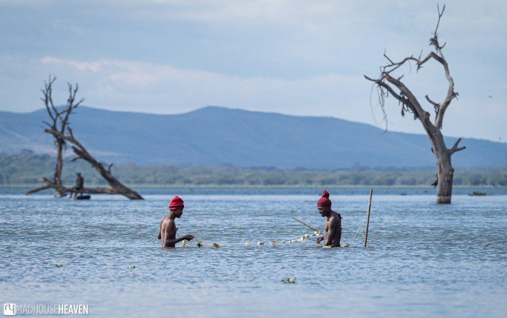 Two fishermen catching fish in Lake Naivasha using a small net