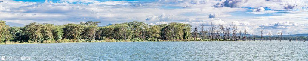 Panorama of Lake Naivasha, with its tree covered shoreline