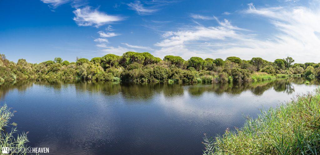 Beautiful lagoon outside the El Acebrón Palace