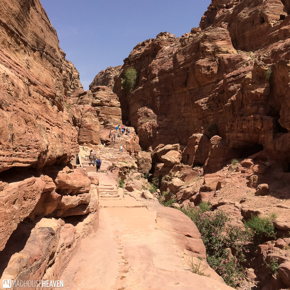 Steps up on the hike to the Monastery through the mountains of Petra
