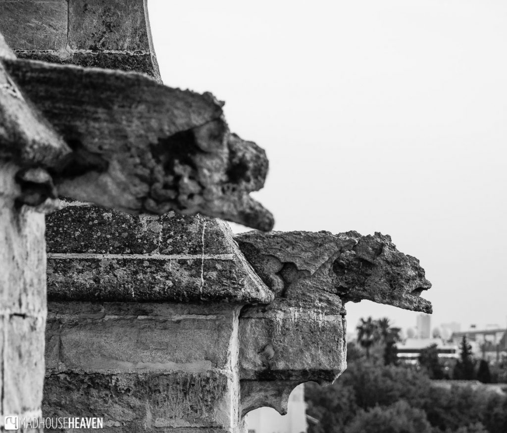 Black and white photograph of the stone gargoyles of the Seville Cathedral