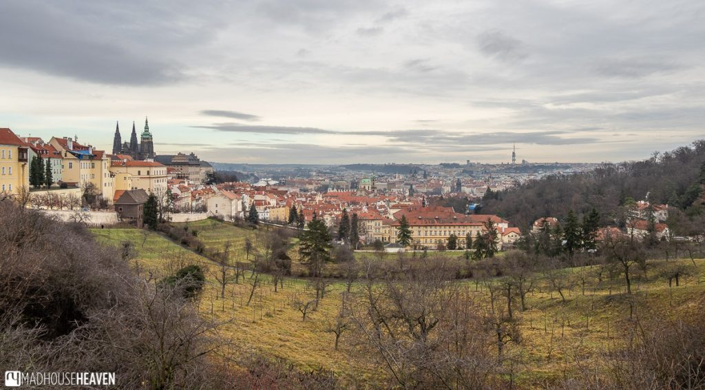 A panorama of Prague, with Petrin Gardens in the foreground and the old town behind