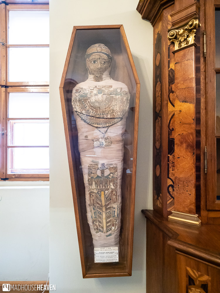 A mummy on display, hanging on a wall in the Strahov Monastery