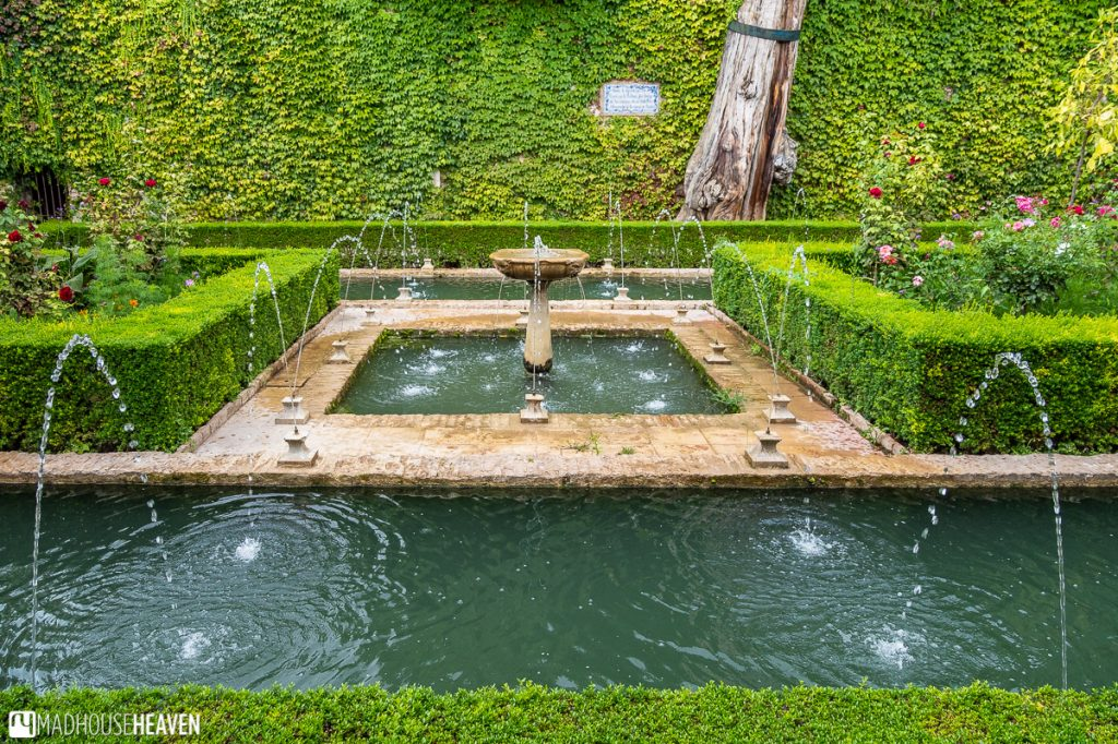 Generalife is filled with many beautiful, little gardens bustling with the activity of pools, streams and fountains