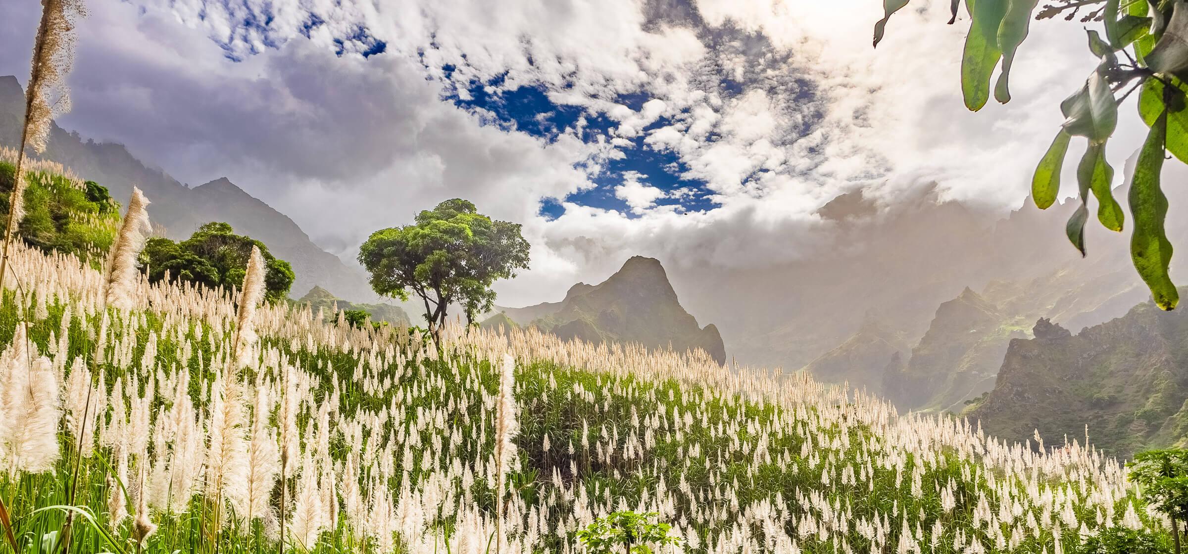 Paul Valley, Santo Antao Island, Cape Verde