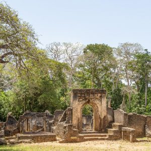 Gedi Ruins in Kenya