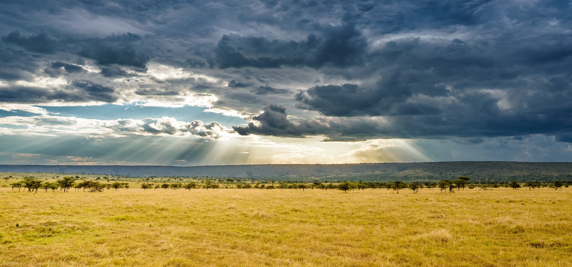 Stormy weather over the Masai Mara