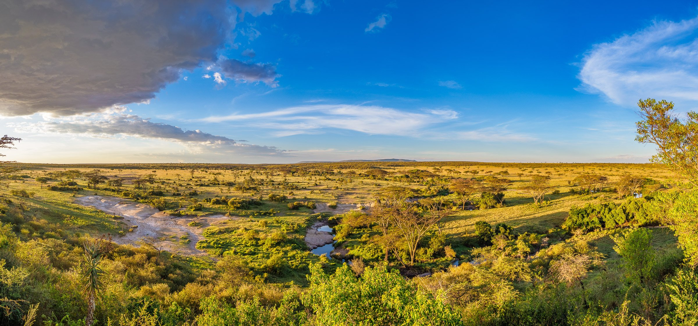 The view from Eagle View Camp, the landscape of the Masai Mara