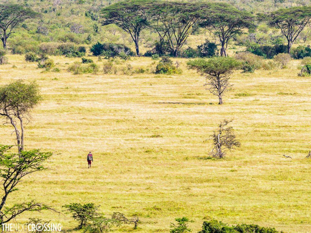 A Maasai man on the plains of the Masai Mara