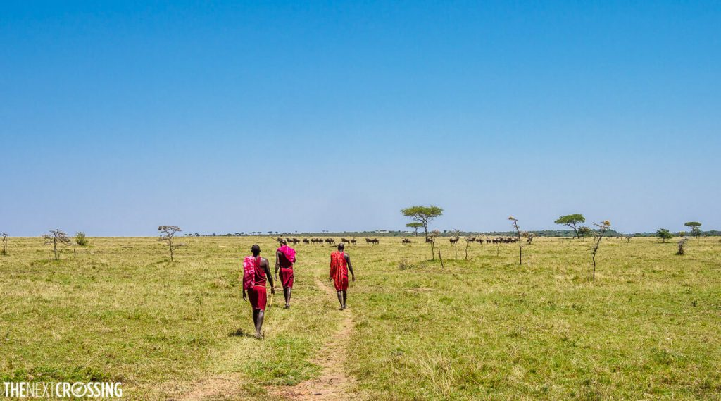 Our walking safari took us on one of the dirt roads, led by three Maasai guards