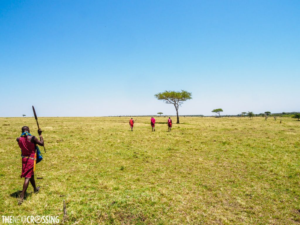 Masai warrior with a spear