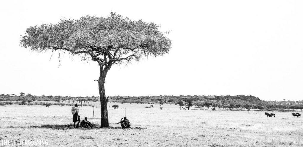 Three Maasai ascari under an acacia tree