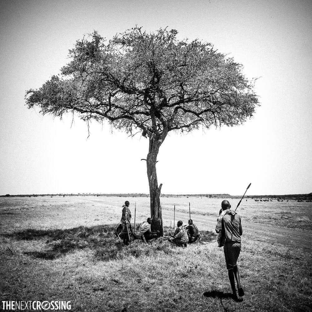 Four Maasai ascari resting under the shade of an Acacia tree