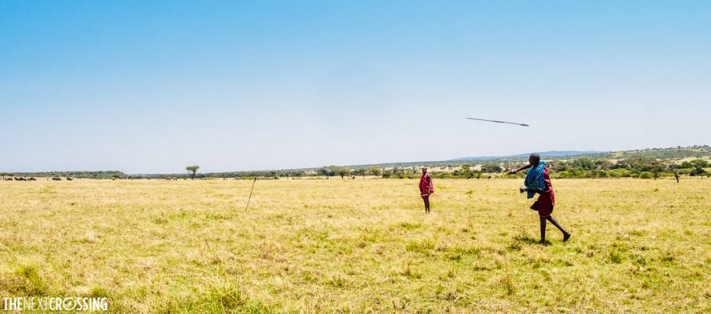 Massai spear launched into the air