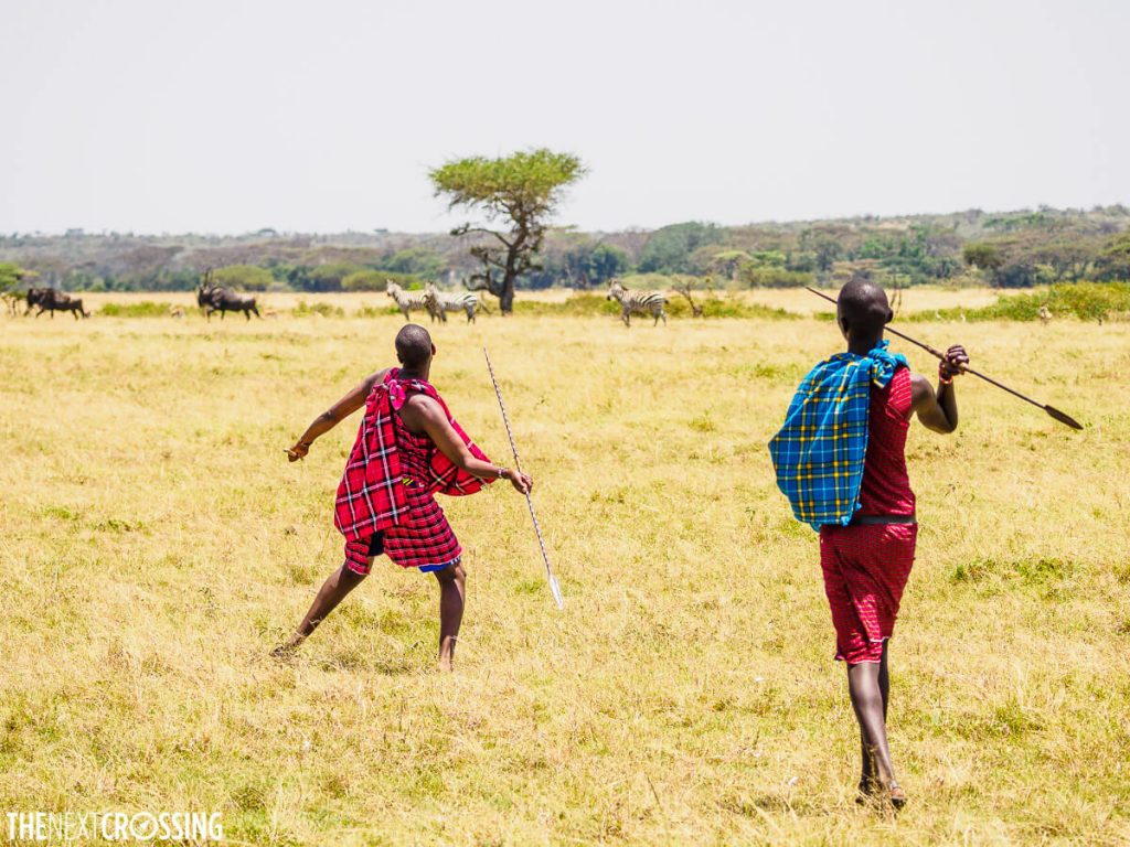 Two Maasai warriors demonstrate how to use the spear