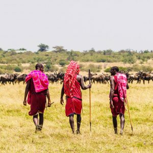 Walking safari with three Maasai guides on the Masai Mara