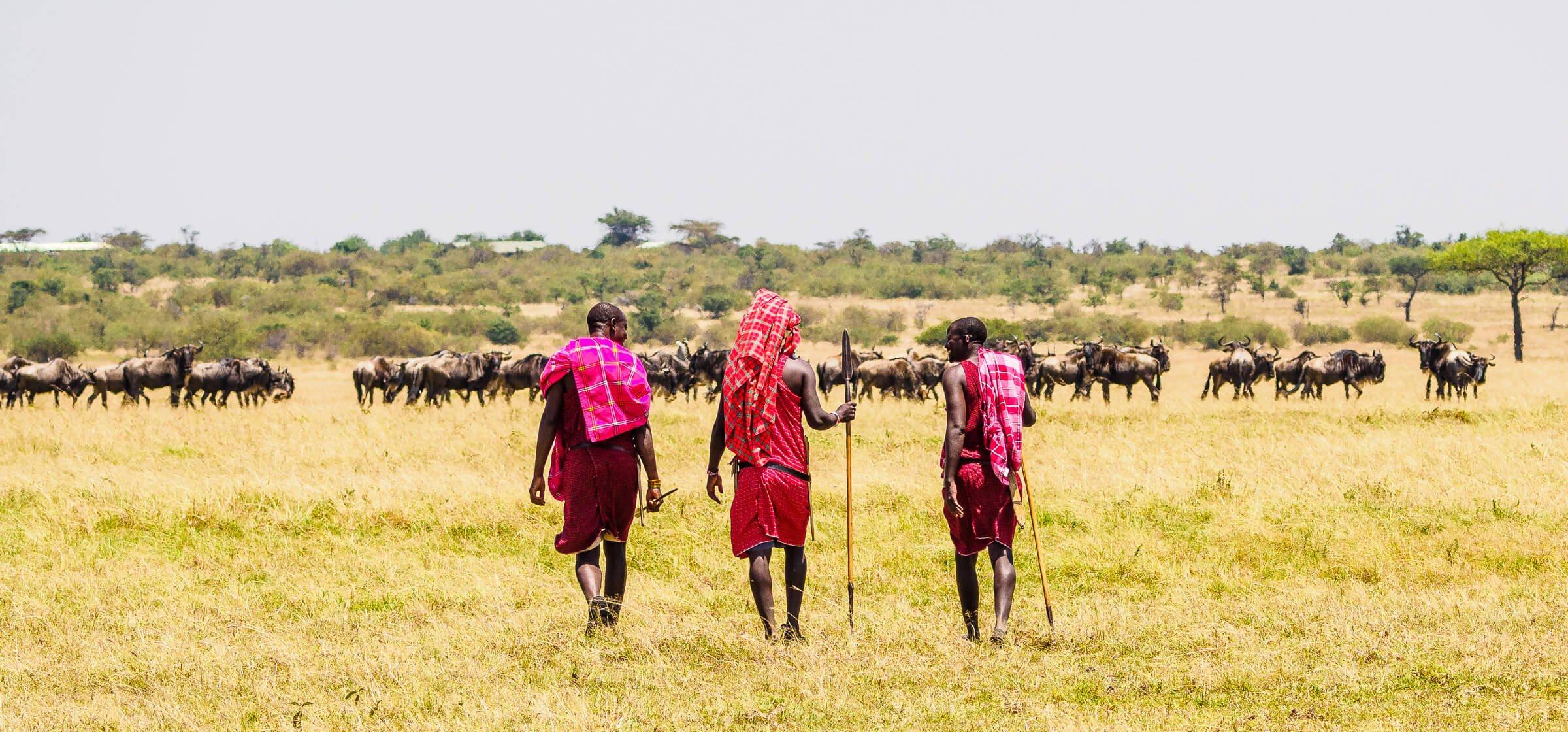 Walking safari with three Maasai guides on the Masai Mara