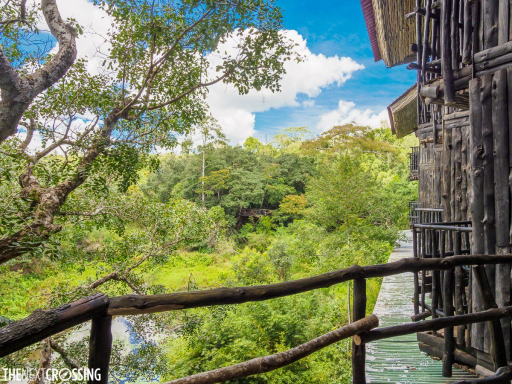 the view of the rainforest from the balcony of shimba hills lodge suite