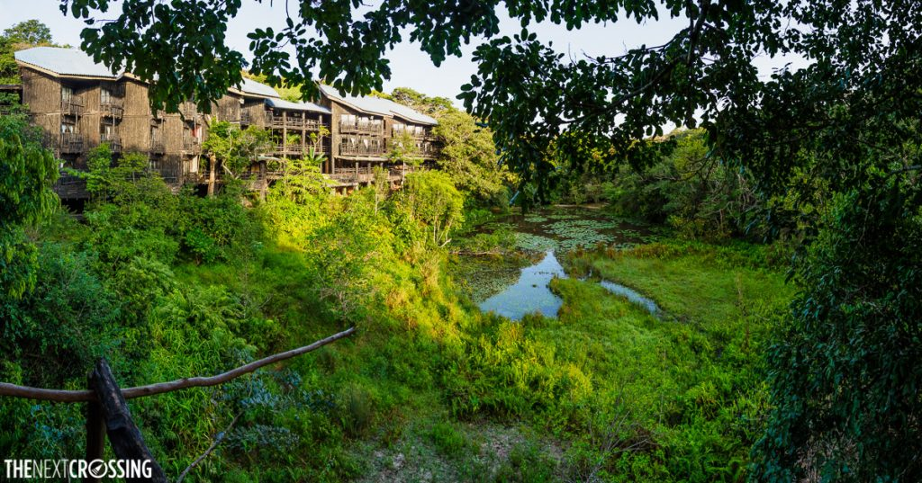 the incredible exterior of the shimba hills lodge, looking like a large treehouse in the tree canopy