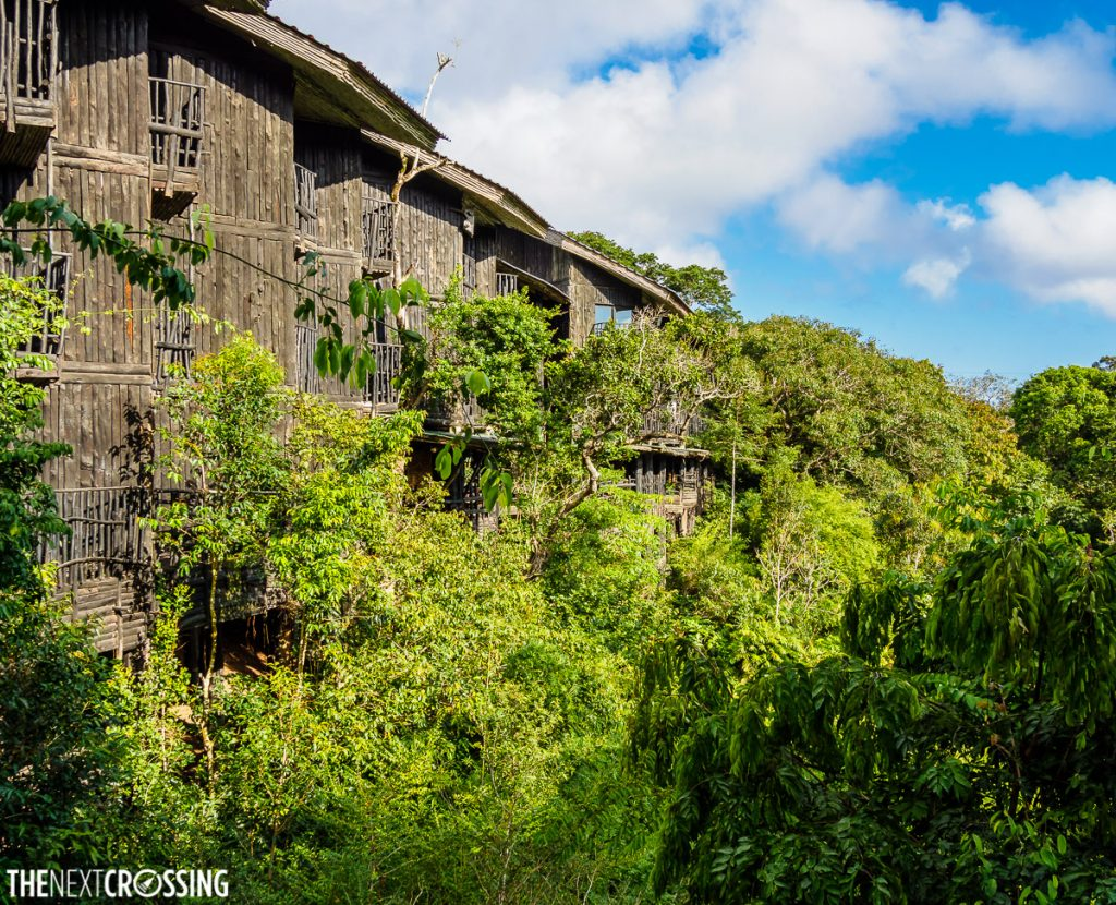 the wooden exterior of shimba hills lodge half hidden among the trees of the dense rainforest