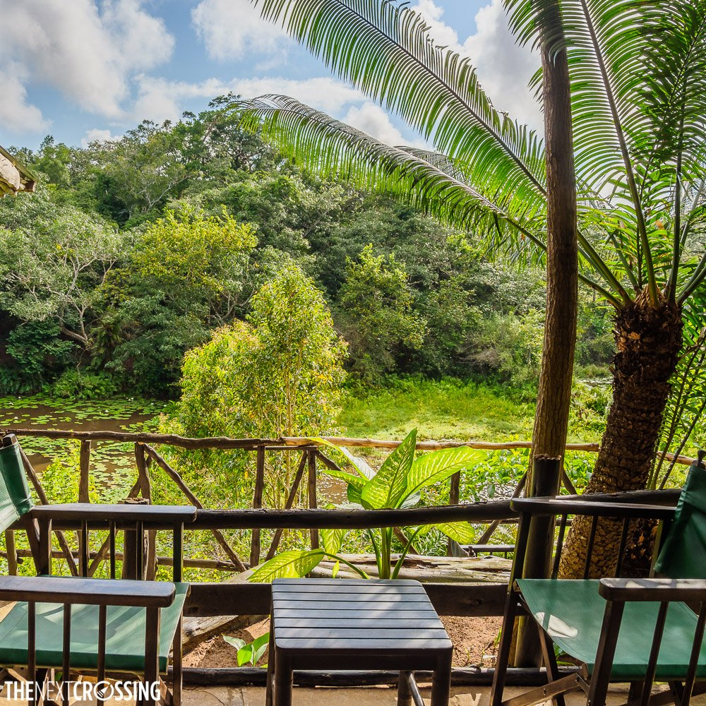 The perfect spot for a gin and tonic, overlooking the rainforest of Shimba Hills