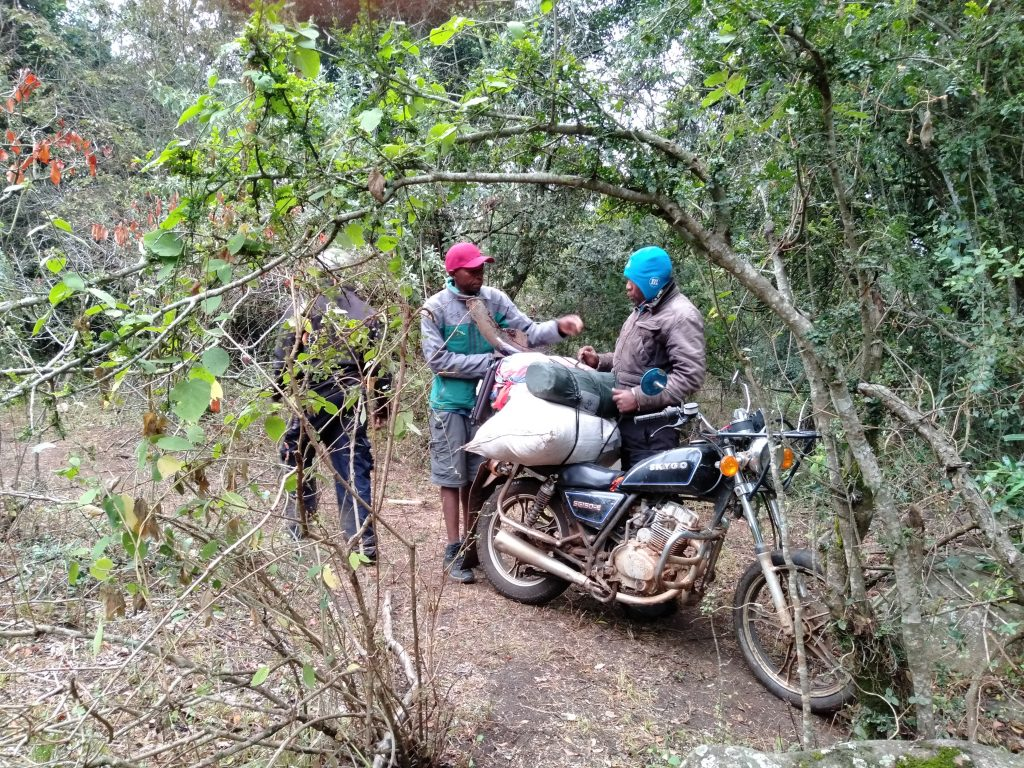 maasai motocycle in the bush, delivering provisions
