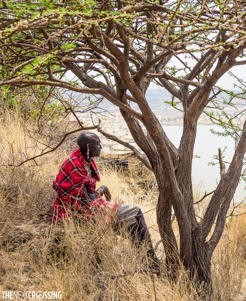 johnny, our maasai guide, resting under the shade of an acacia tree