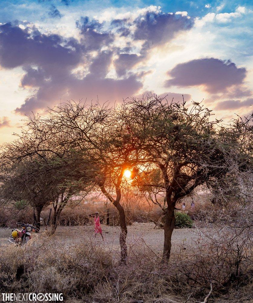 sunset through the acacia trees, over a maasai girl